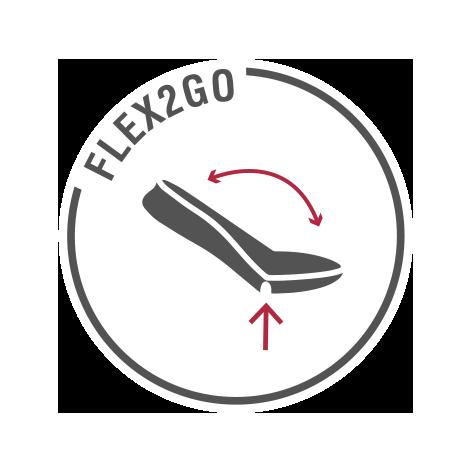 Flex2Go